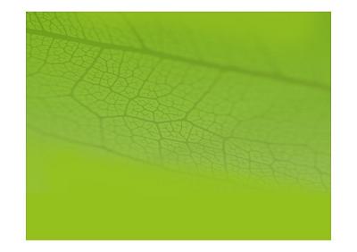 Plaquette CarbonArtik FEP